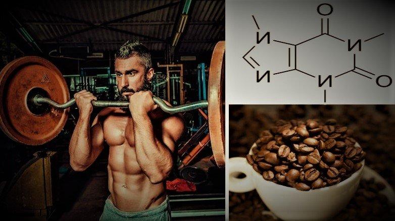 Вот, как потребление кофеина перед тренировкой влияет на организм | FIT PRO | Яндекс Дзен